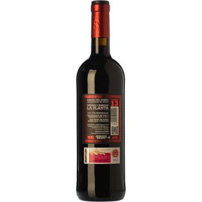 La Planta vino arzuaga