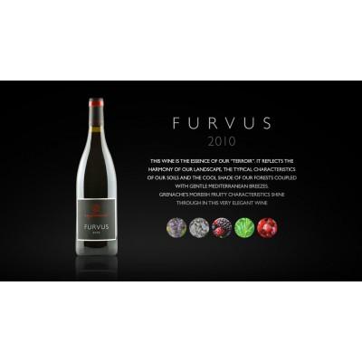 Furvus